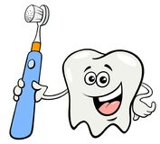 Tooth character with toothbrush cartoon Royalty Free Stock Photo