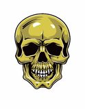 Cartoon Vector Skull . Hand drawn. Eps8 Royalty Free Stock Photo
