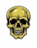 Cartoon Vector Skull . Hand drawn. Eps8 Royalty Free Stock Photo
