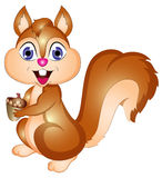Cartoon Vector Squirrel Illustration Stock Photography