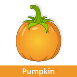 Cartoon Vegetable - Orange Pumpkin Stock Photo