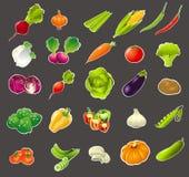 Cartoon vegetable set Royalty Free Stock Photo