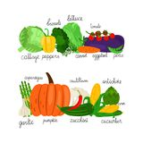 Cartoon vegetables collection vector. Fresh food market isolated on white background. Illustration of vegetable organic food, healthy agriculture ingredient stock illustration