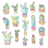 Cartoon vintage cactus illustration Stock Images