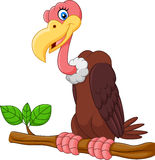 Cartoon Vulture on a tree branch. Illustration of Cartoon Vulture on a tree branch Royalty Free Stock Photos