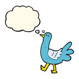 Cartoon walking bird with thought bubble Stock Photo