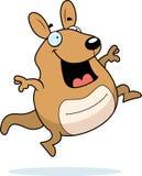 Cartoon Wallaby Jumping. A happy cartoon wallaby jumping and smiling Royalty Free Stock Image