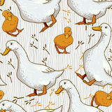 Cartoon Wallpaper with duck Royalty Free Stock Images