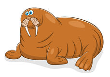 Cartoon walrus Stock Photo