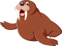 Cartoon walrus Royalty Free Stock Photo