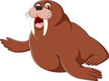 Cartoon walrus Royalty Free Stock Photo