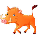 Cartoon warthog Stock Photo