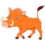 Cartoon warthog Royalty Free Stock Photo