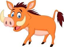 Cartoon warthog walking Stock Photography