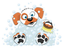 Cartoon washing dog. Stock Image