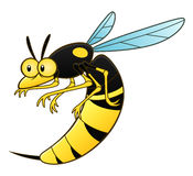 Cartoon wasp pest. Vector pest series Vector Illustration