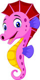 Cartoon watercolor Seahorse Stock Photo