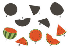 Cartoon watermelon. Find the right shadow image. Educational games for kids.Vector stock illustration Stock Photo