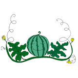 Cartoon watermelon in foliage and flowers  on white back. Ground.Vector hand drawn illustration striped watermelons, coloring page for adult and children,art Royalty Free Stock Images