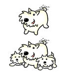 Cartoon Westie and pups. Adorable West Highland terrier with two pups Royalty Free Stock Photography