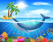 Cartoon whale in blue ocean. Background.  illustration Stock Image