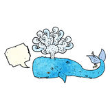 Cartoon whale with speech bubble Royalty Free Stock Images