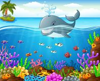 Cartoon whale under the sea Royalty Free Stock Image