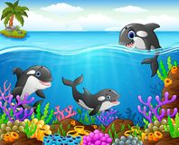 Cartoon whale under the sea. Illustration of cartoon whale under the sea Royalty Free Stock Image