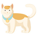 Cartoon white and orange cat Stock Image