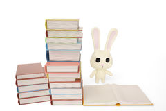 Cartoon white rabbit with books,3D illustration. Stock Image