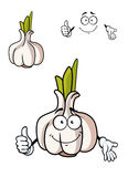 Cartoon whole fresh garlic bulb Stock Images