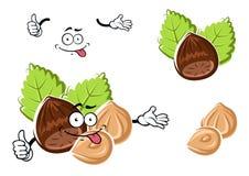 Cartoon whole and peeled hazelnut Stock Image