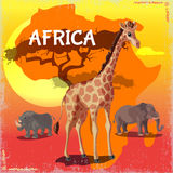 Cartoon Wild African Animals Concept. With giraffe rhino and elephant on colorful savannah background vector illustration Royalty Free Stock Photos
