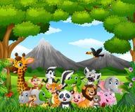 Cartoon wild animal in the jungle Stock Photo