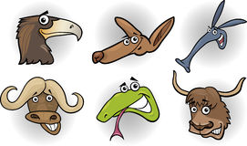 Cartoon wild animals heads set. Cartoon Illustration of Different Funny Wild Animals Heads Set: Eagle; Kangaroo; Aardvark; Buffalo; Snake and Yak Stock Photos
