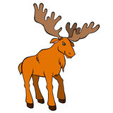 Cartoon wild animals for kids. Cute elk with huge horns. Royalty Free Stock Photos