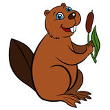 Cartoon wild animals for kids. Little cute beaver holds a reed. Stock Photo