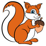 Cartoon wild animals for kids. Little cute squirrel holds acorn Royalty Free Stock Image