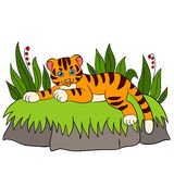 Cartoon wild animals for kids: Tiger. Little cute baby tiger smile Stock Photo