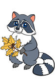 Cartoon wild animals. Little cute raccoon. Royalty Free Stock Photo
