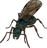 Cartoon winded ant Royalty Free Stock Image