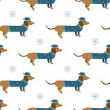 Cartoon winter dachshund with hat and sweater vector seamless pa. Cartoon winter dachshund dogs with hat and sweater with a snowflakes vector seamless background Royalty Free Stock Photography