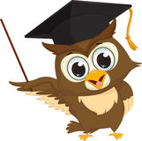 Cartoon wise owl with pointer giving educational presentations Stock Photo
