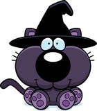 Cartoon Witch Cat Sitting Stock Photo