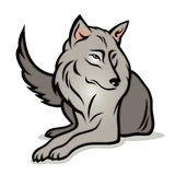 Cartoon wolf Royalty Free Stock Images