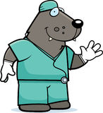 Cartoon Wolf Doctor Stock Image