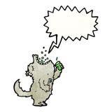 cartoon wolf gargling mouthwash Stock Image