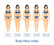 Cartoon Women Slimming Stages Card Poster. Vector. Cartoon Women Slimming Stages Card Poster Fat Thin Figure Shape Progress Fitness and Diet Flat Style Design Stock Image