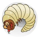 Cartoon wood worm Stock Photos