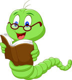 Cartoon worm reading book Stock Photography